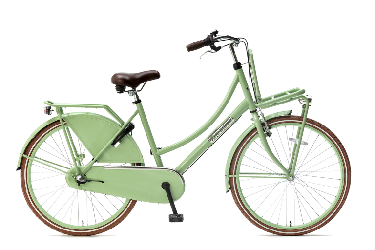 Popal Popal meisjesfiets 26 inch met versnellingen daily dutch 26 inch N3 Meisjesfiets Transportfiets 26 inch met versnellingen Pistasch groen