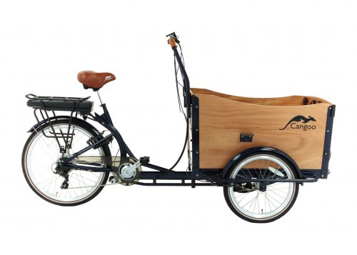 Cangoo Travel Bakfiets 13AH Naturel Cangoo Travel 220E